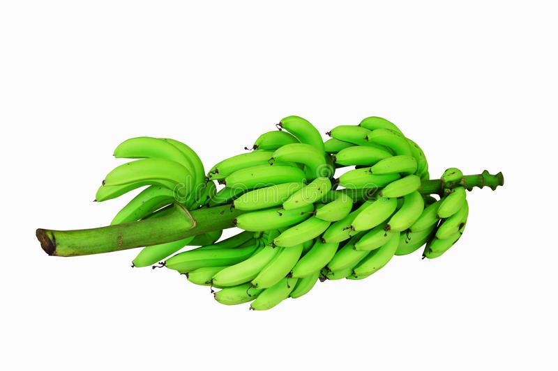 the green bunch of bananas on white background isolated stock images