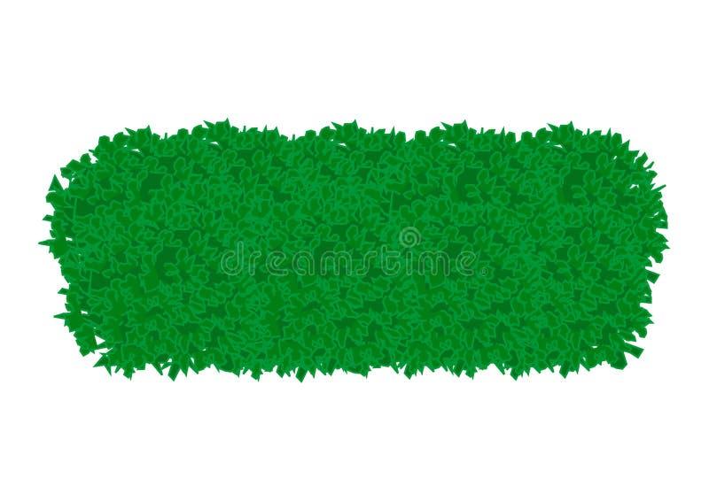 Green bush vector illustration