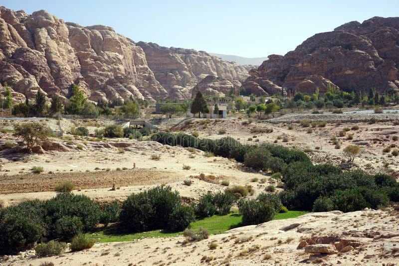 Green bush near dam. In Jordan stock images