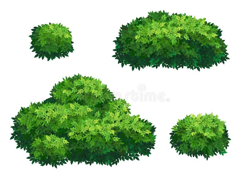 Green bushes and tree crown. royalty free stock photo