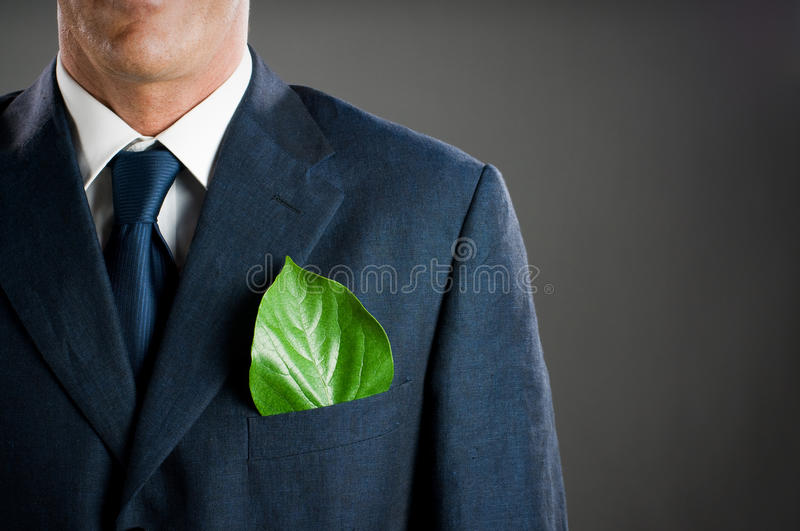Download Green business stock photo. Image of environment, adult - 10189130