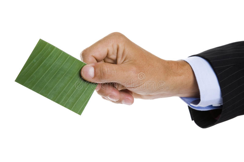 Green Business Card royalty free stock photo