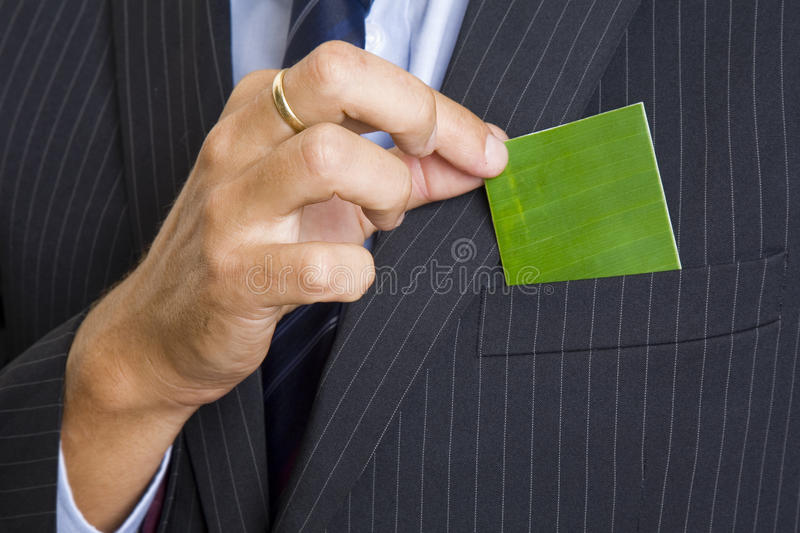 Green Business Card royalty free stock images