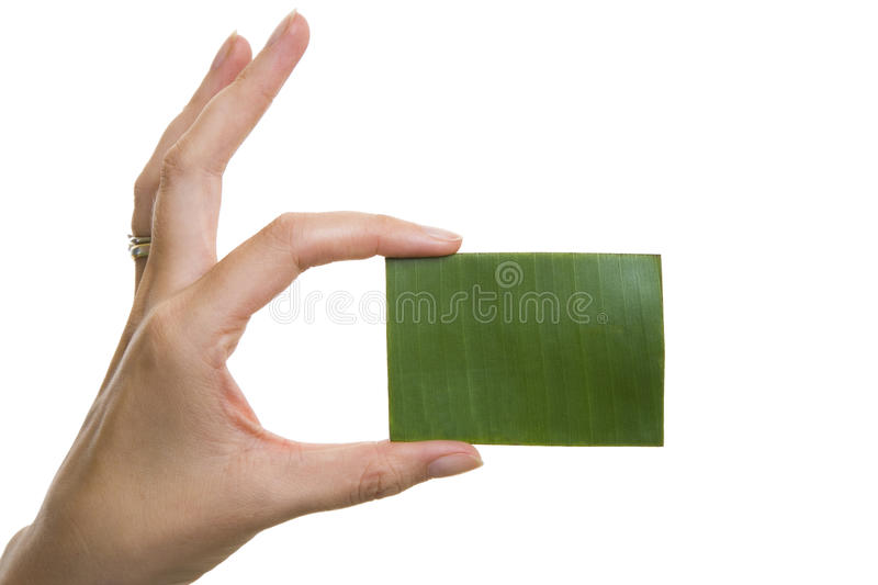 Green Business Card stock photo