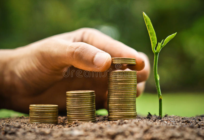 Green business. Business with csr practice / hand giving coins to stacks of coins in graph shape with a young plant royalty free stock photo