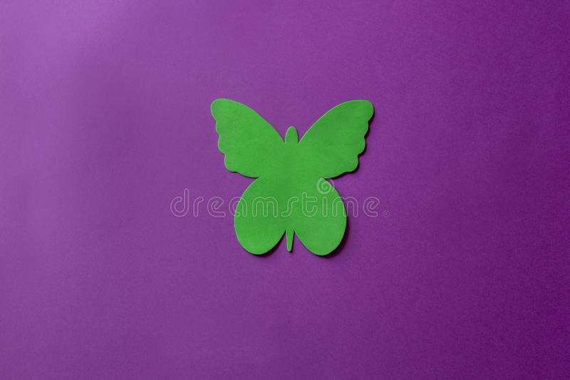 Green butterfly made of soft material on a violet background. Artificial butterfly on bright background royalty free stock photo