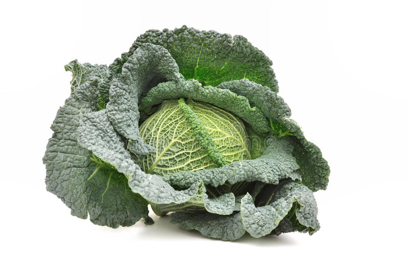 Download Green cabbage stock photo. Image of green, leaves, healthy - 27689374