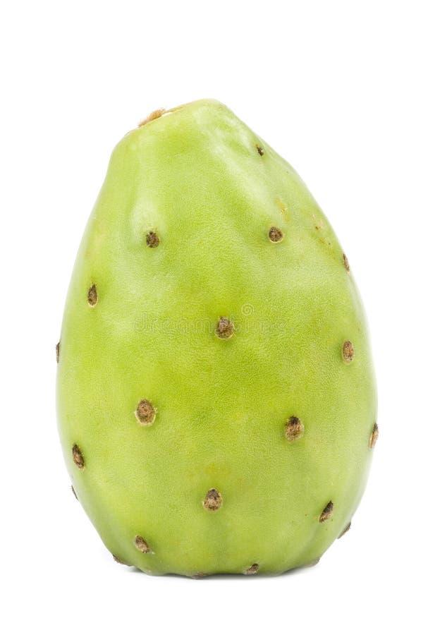 Free Green Cactus Pear Stock Photo - 7096120