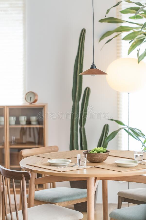 Green Cactus Plant Near to White Ceramic Plate on Brown Wooden Table stock photography