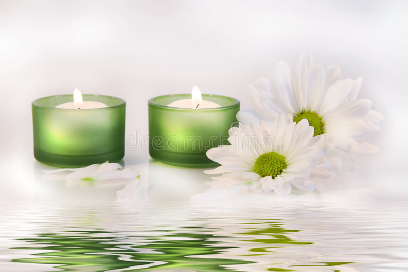 Green Candles And Daisies Near Water Reflection Stock Images