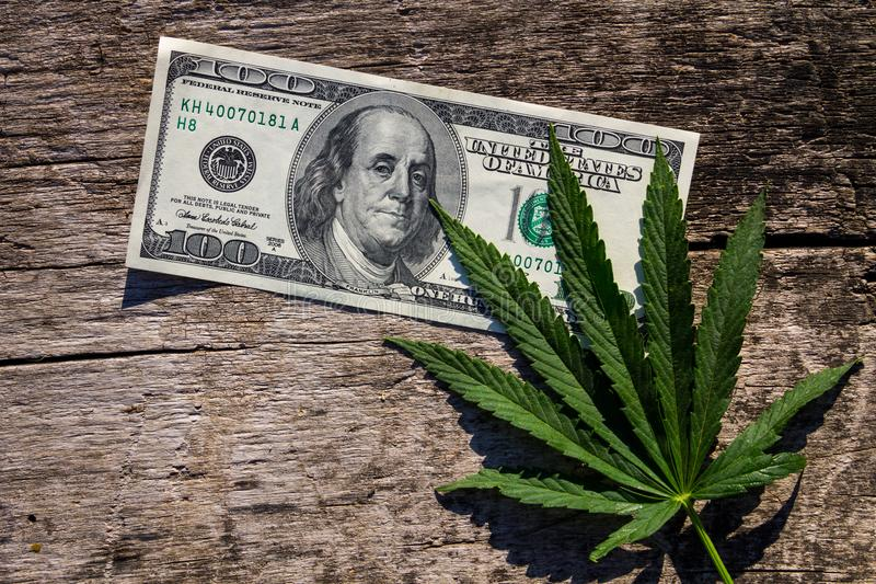 Green cannabis leaf and 100 dollar bill on wooden table stock photos