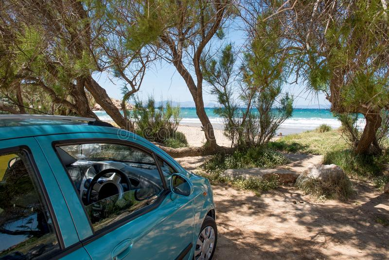 Green car parked on sand beach under the trees stock image
