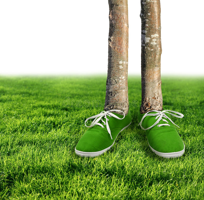Green carbon footprint concept. Green carbon footprint environmental concept, shoes growing trees stock image