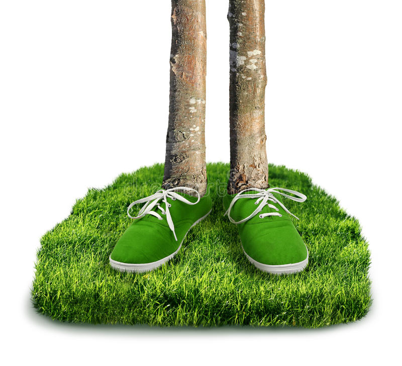 Green carbon footprint concept. Green carbon footprint environmental concept, shoes with trees isolated royalty free stock image