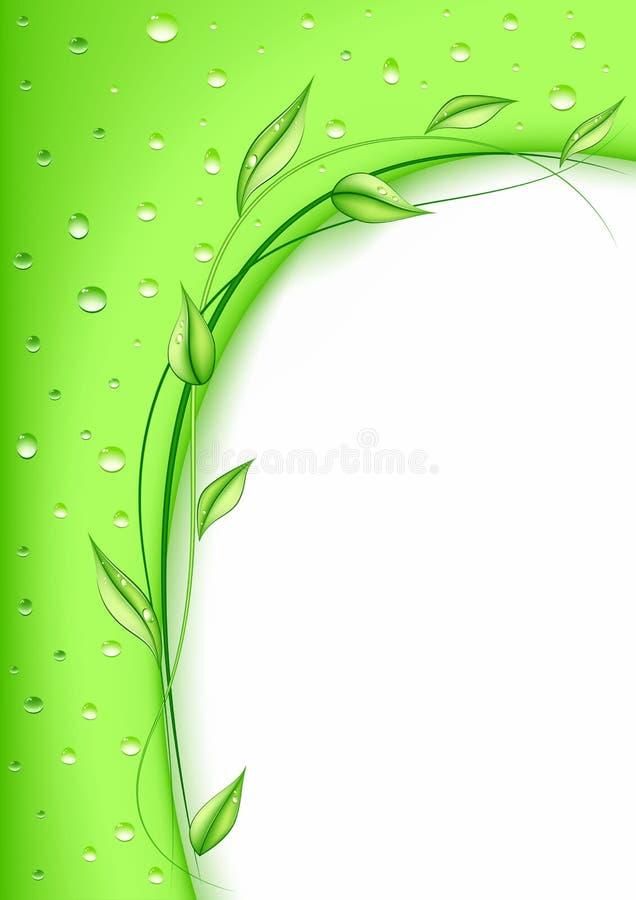 Free Green Card Royalty Free Stock Photo - 18260615