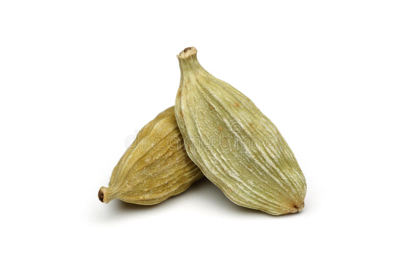 Green cardamom. Isolated on white background royalty free stock photography