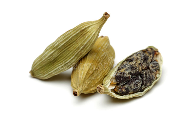 Green cardamom. Isolated on white background stock photos
