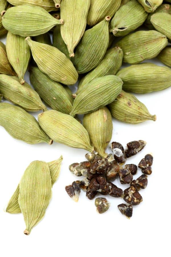 Green cardamon. With cardamon seeds stock photography