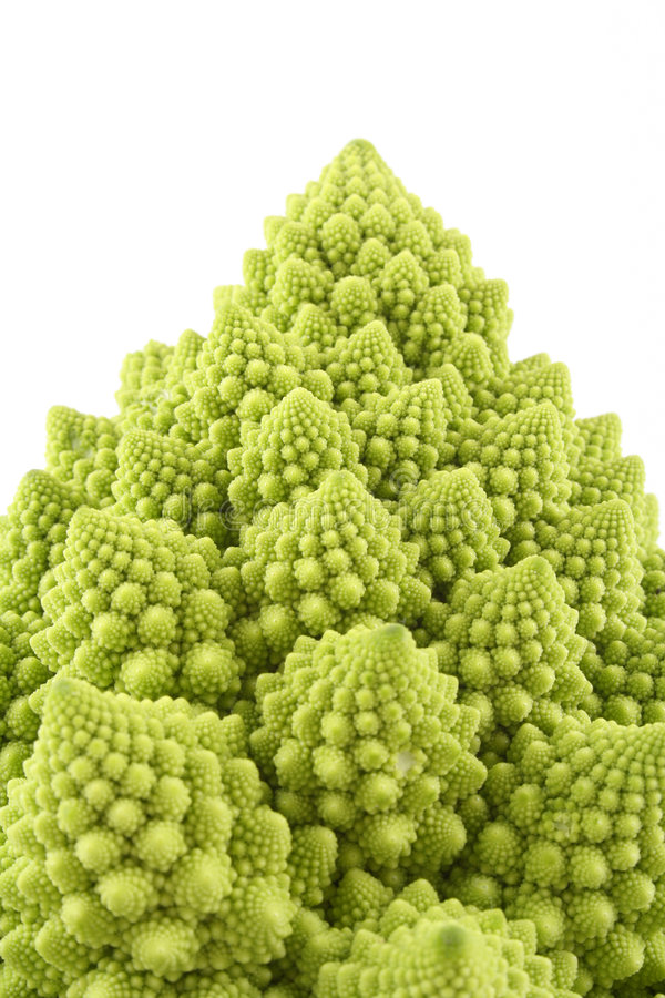 Green cauliflower royalty free stock images