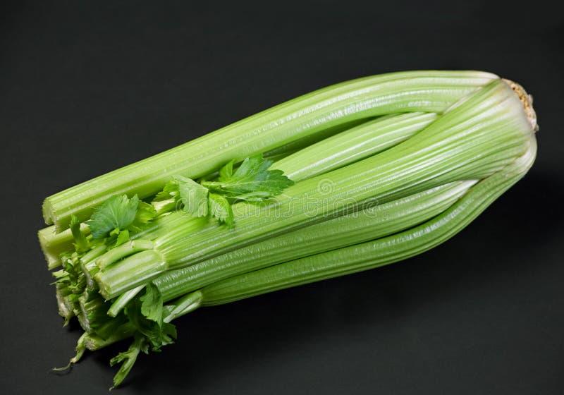 Green celery stock image