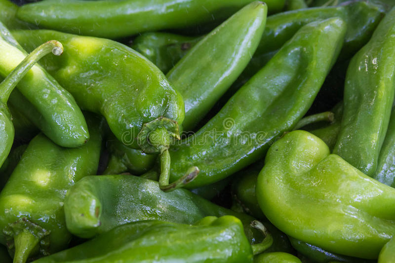 Green Chile Peppers. Close-up of a group of Anaheim peppers. An Anaheim pepper is a mild variety of the New Mexico chile pepper cultivar No. 9. The name Anaheim royalty free stock photos