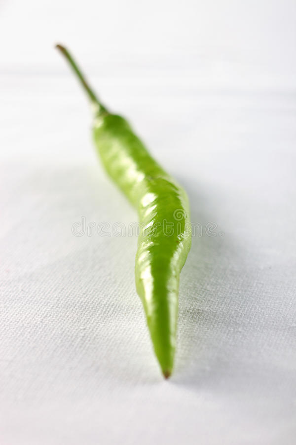 Green chili pepper on white. Cloth background royalty free stock photos