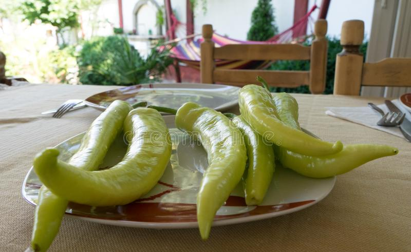Green Chilli pepper on a garden table. Mediterranean food in a plate ready to eat. Raw Organic. Home Chair. Dish, hot, party, lunch, oil, chef, cooking, snack royalty free stock photo