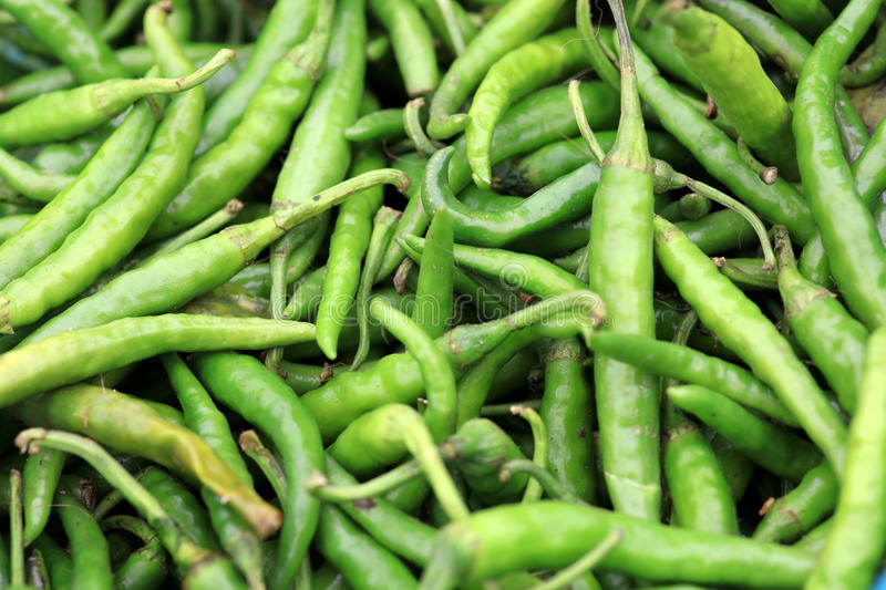 Green chillies royalty free stock images