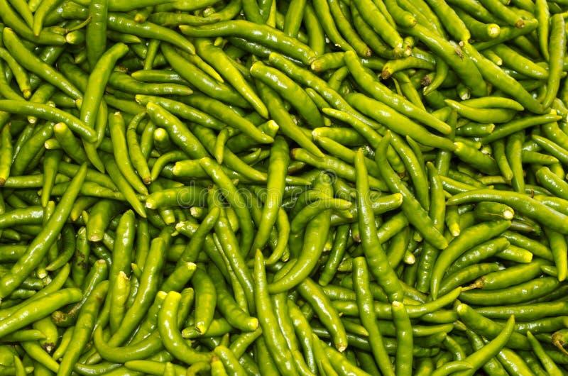 Green chillis stock photos