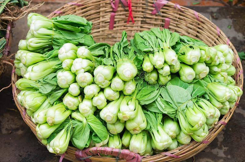 Green chinese cabbage in street market Can Tho Vietnam. Green chinese cabbage at the counter in the street market in Can Tho, in Vietnam royalty free stock photo