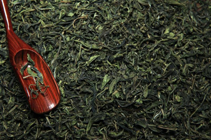 Green Chinese tea background nobody. Studio royalty free stock photography