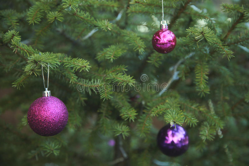 Green Christmas Tree With Colorful Ball Ornaments. Elegant Green Christmas Tree With Colorful Ball Ornaments stock photography