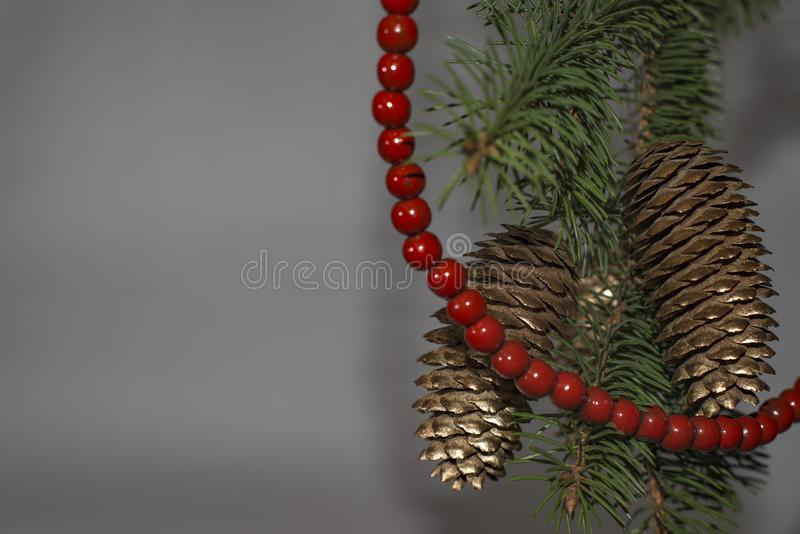 Green Christmas tree with red beads and Golden pine cones on bra royalty free stock image