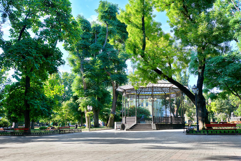 Green city park, summer season, bright sunlight and shadows, beautiful landscape, home and people on street stock photo