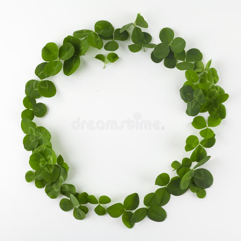 Green clover shamrock leafs wreath border frame on white background. St. Patrick`s Day postcard template. stock photo