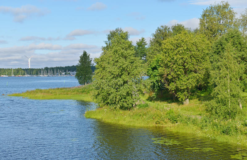 Green coastline in Oulu. Finland royalty free stock photo