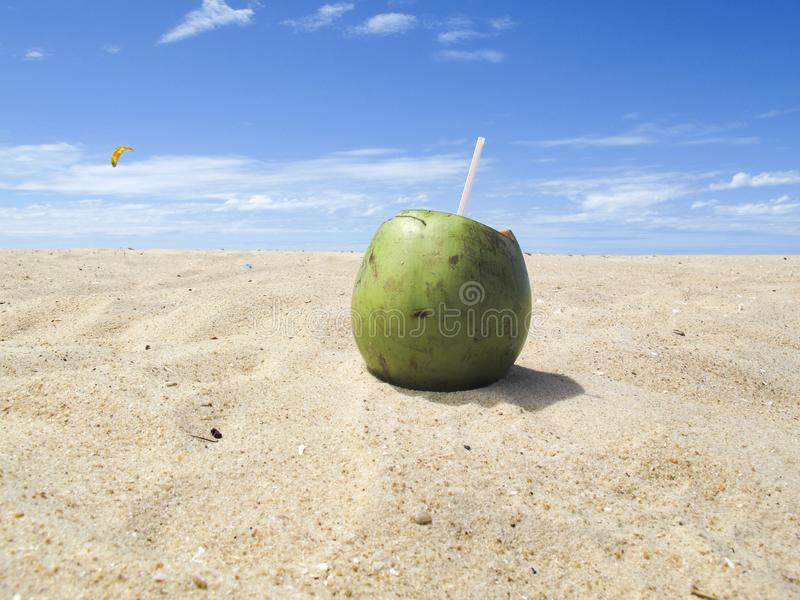 Green coconut on beach with blue sky - vacation. Big green coconut with straw on beach day with bright blue sky - Concept of vacation, rest, leisure, promenade royalty free stock photo