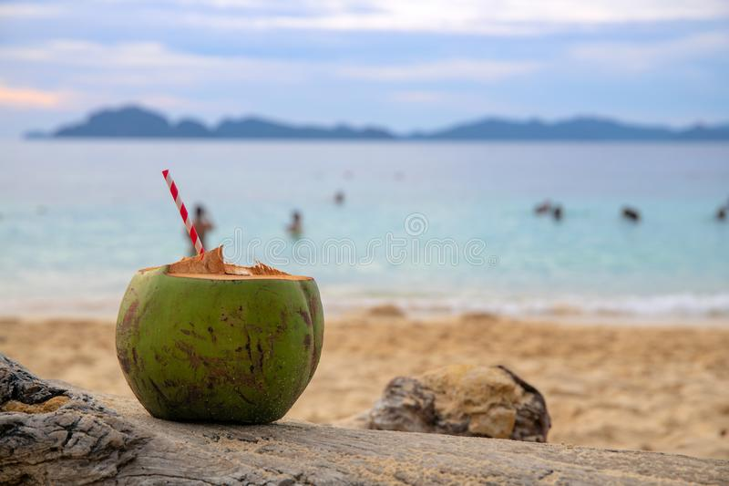 Green coconut drink with straw on sea beach sand. Coconut juice on tropical seashore. White sand beach relax royalty free stock photo