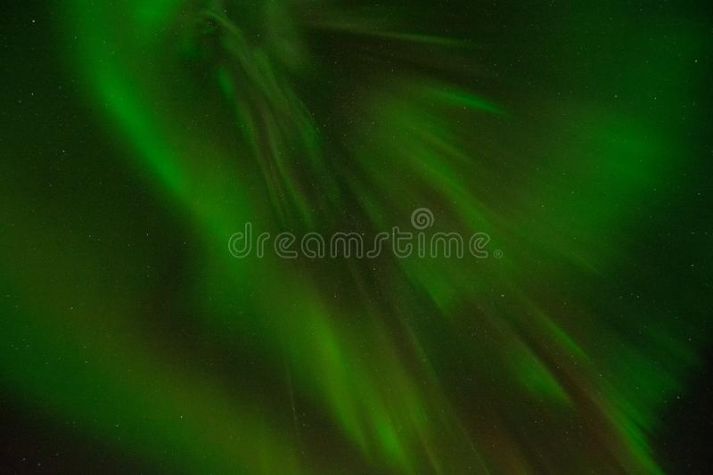 Green Color royalty free stock photos