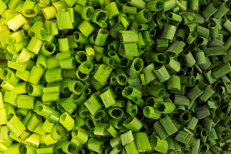 Green color gradation with chopped spring onion, texture background. Flat lay, overhead view stock photos