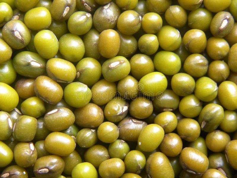 Green color whole Mung beans legume.  royalty free stock photos