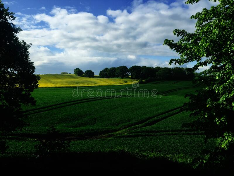Green country fields, Germany royalty free stock images