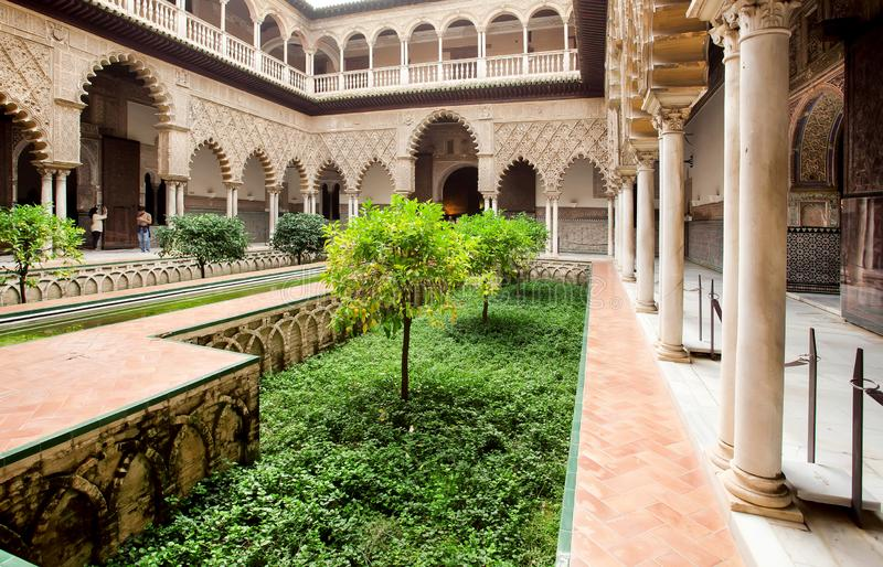 Green courtyard of Alcazar, example of Mudejar architecture of the 14th century, historical royal palace with trees. SEVILLE, SPAIN - NOV 15: Green courtyard of stock photos