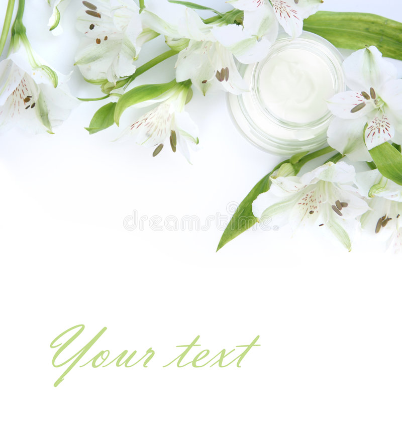 Green creme royalty free stock images