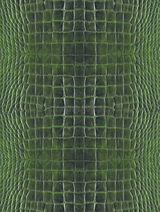 Green crocodile skin stock photo