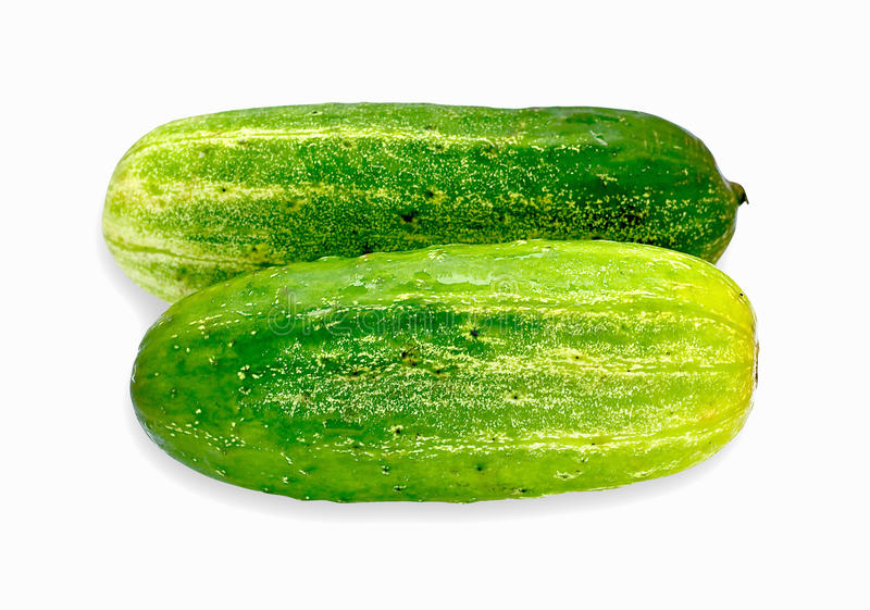 Green cucumbers on white background stock photography