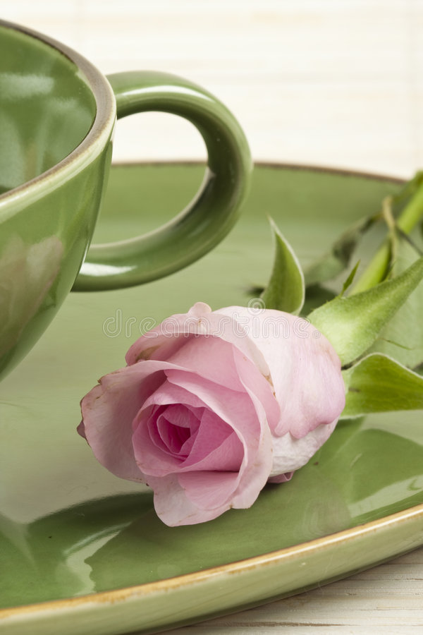 Green cup and rose stock photography