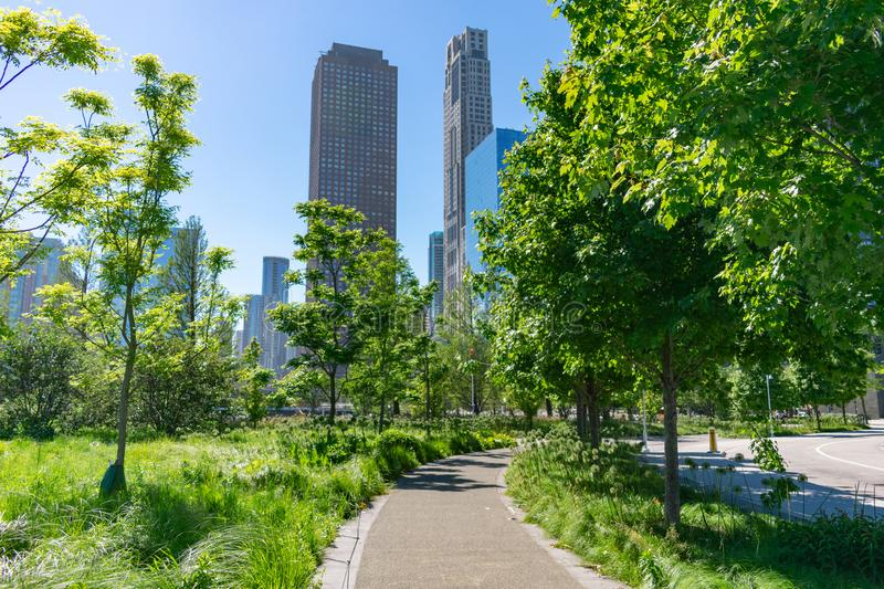 Green Curving Path at a Park in the Streeterville Neighborhood of Chicago with Downtown Buildings photo stock