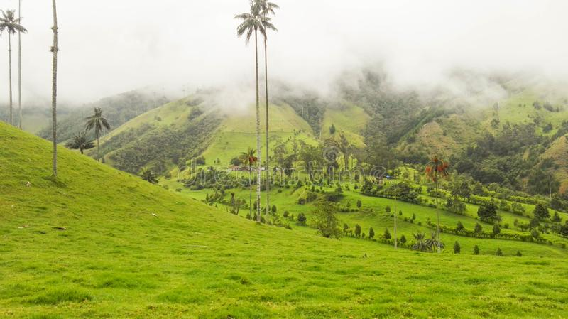 Green and deep valley. Beautiful deep green valley with mountains in the background stock photos