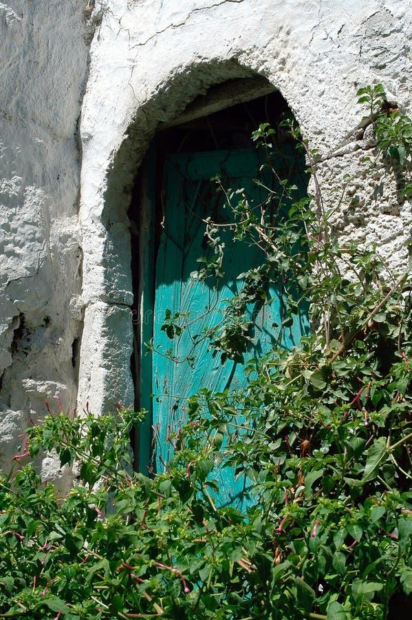 A green door behind green plants stock photos